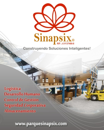 Carpeta Sinapsix copia
