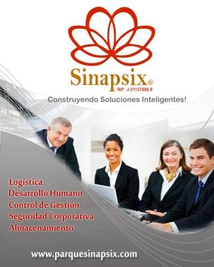 Carpeta Sinapsix desarrollo